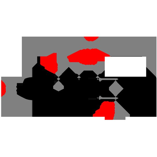 PD 1000-50 ламель